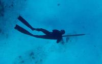 Pesca sub in apnea